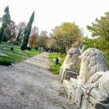 Steinlöwen im Olesko-Schloss-Garten lizenzfreies stockbild