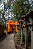 Steinlampen und orange torii lizenzfreie stockbilder