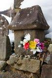 Steinlaterne und Blumen lizenzfreies stockfoto