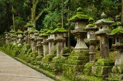 Steinlaternen in Nara lizenzfreies stockbild