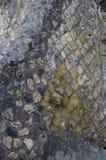 Steinmaurerarbeit in Pompeji, Italien Stockbild