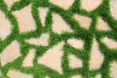 Steinpfad in der Gartenbeschaffenheit des grünen Grases Lizenzfreies Stockbild