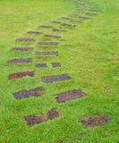 Steinpfad mit grünem Gras Lizenzfreies Stockfoto