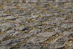 Steinpflasterungsnahaufnahme mit Gelenken, Spalte und ein wenig von GR Lizenzfreies Stockfoto