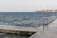 Steinpier mit Leiter für das Schwimmen Piran, Slowenien Stockbild