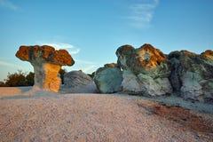Steinpilze gefärbt im Gelb vom Sonnenaufgang nahe Beli-plast Dorf, Bulgarien Lizenzfreie Stockfotos