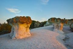 Steinpilze gefärbt im Rot vom Sonnenaufgang nahe Beli-plast Dorf, Bulgarien Stockfotos