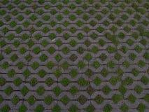 Steinplasterung mit grünem Gras Lizenzfreie Stockfotos