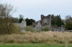 Steinschloss-Ruinen von Desmond Castle in Adare Irland Lizenzfreie Stockfotografie