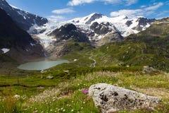 Steinsee en gletsjer Royalty-vrije Stock Afbeeldingen