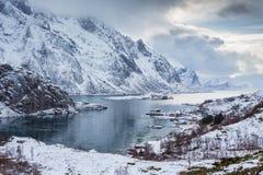 Steinsfjorden, îles de Lofoten, Norvège photographie stock libre de droits