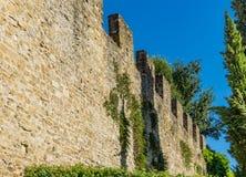 Steinstadtmauer-Grün-Bäume Toskana Florence Italy stockbild