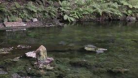 Steinstatue auf Teich stock video footage