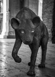 Steinstatue eines Dingos Stockfotos