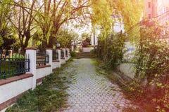 Steinstraße, Bäume und Gras Lizenzfreie Stockfotografie