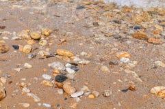 Steinstrand- und Seeuferhintergrund Stockbilder