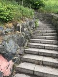 Steintreppe im Garten stockfotografie