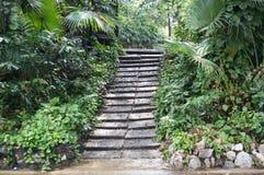 Steintreppe im Wald Lizenzfreie Stockfotos