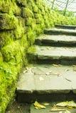 Steintreppe und moosige Wand Stockfotos