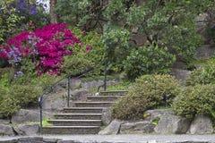 Steintreppen am Rhododendron-Garten Lizenzfreie Stockfotos