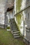 Steintreppenhaus auf grüner Wand Lizenzfreies Stockbild