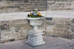 Steinvase mit Blumen Lizenzfreie Stockfotos