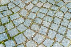 Steinwürfelbahnbeschaffenheit gewellt, diagonal, Moos lizenzfreie stockfotografie