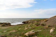 Steinwüste mit seltener Vegetation stockfoto