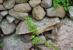 Steinwand auf Block-Insel 4 Stockfotos