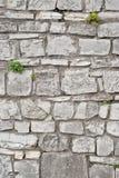 Steinwand backgrond Stockfoto