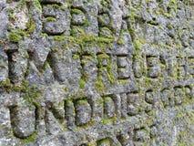 Steinwand bedeckt mit Moos Stockfoto