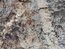 Steinwand-Beschaffenheitsfoto Stockfoto