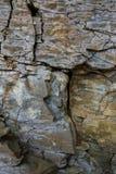 Steinwand des Felsens mit Sprüngen Lizenzfreie Stockfotografie