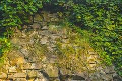 Steinwand des mittelalterlichen Schlosses Stockfotos