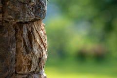 Steinwand eines Gebirgsschutz lizenzfreie stockfotografie