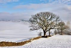 Steinwand im Winter-Schnee Stockfotos