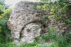 Steinwand mit bedeckt Stockfotos