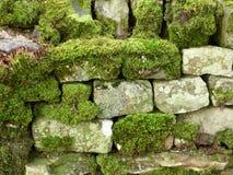 Steinwand mit einer Kruste bedeckt mit Moos Stockbilder