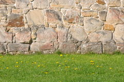 Steinwand mit grünem Gras Lizenzfreie Stockfotos