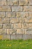 Steinwand mit grünem Gras Lizenzfreies Stockfoto
