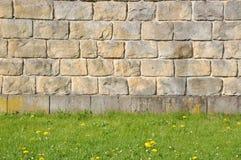 Steinwand mit grünem Gras Stockfoto