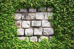Steinwand mit Hecke lizenzfreie stockfotografie