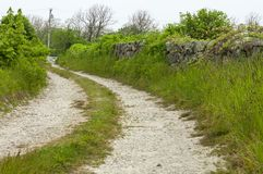 Steinwand nahe bei rutted Schotterweg lizenzfreies stockbild