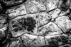 Steinwand in Schwarzweiss Stockbild