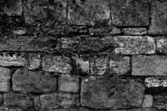 Steinwand tapeziert schwarze weiße Hintergrunddekoration stock abbildung