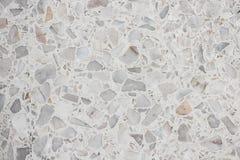 Terazzo Boden steinwandbeschaffenheit terrazzo boden kleiner steinweißzement