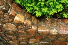 Steinwandnahaufnahme Lizenzfreie Stockbilder
