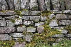 Steinwandnahaufnahme Stockfoto