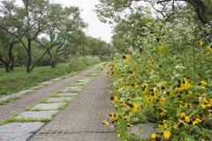 Steinweg im Park Stockbild