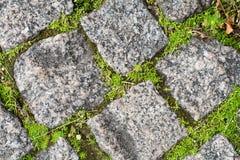 Steinziegelsteine mit Gras und Moos Stockbilder